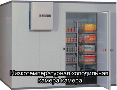 Низкотемпературная камера